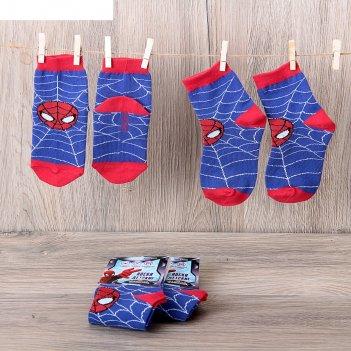 Носки детские человек паук: самый смелый 16-18 см, 4-6 лет, 80% хл.,17% п/