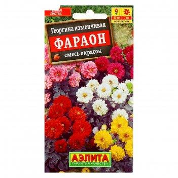 Семена цветов георгина фараон, смесь окрасок, о, 0,3 г