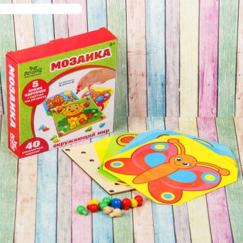 Игрушка-мозаика с шаблонами окружающий мир (в наборе 6 картинок)