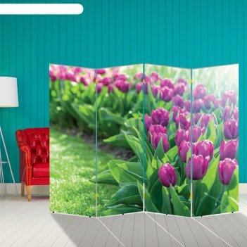 Ширма тюльпаны. декор 12 200 x 160 см, двухсторонняя