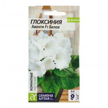 Семена комнатных цветов глоксиния аванти белая f1, мн, цп, 8 шт.