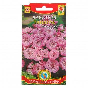 Семена цветов лаватера танагра, о, 0,3 г