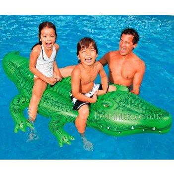 Каталка крокодил большой 213х127 см, от 3 лет