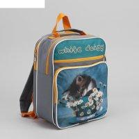 Рюкзак школьный спящий котёнок, 2 отдела на молнии, 2 наружных кармана