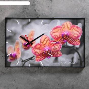 Часы настенные, серия: цветы, орхидеи, 37х60 см