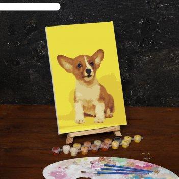Картина по номерам на холсте щенок корги, 30*20 см