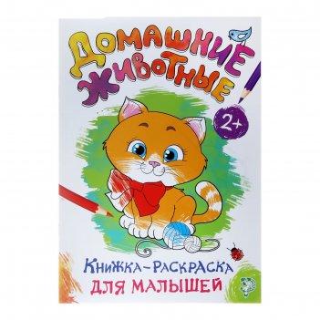Книжка-раскраска для малышей «домашние животные»