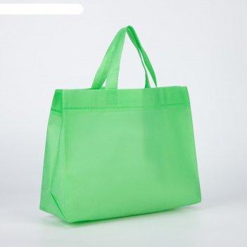 Сумка хозяйственная, отдел без застёжки, без подклада, цвет зелёный