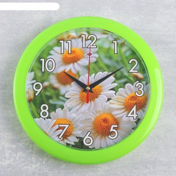 Часы настенные, серия: цветы, ромашки, зеленое кольцо, 23  см, микс