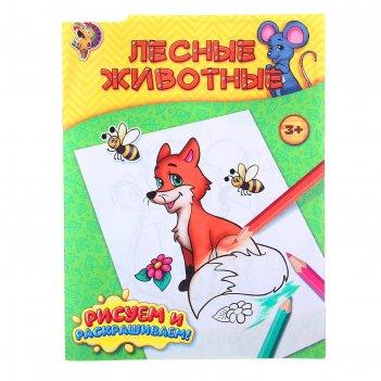 Книжка-раскраска лесные животные
