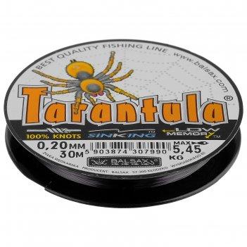 Леска tarantula 0.20 30м