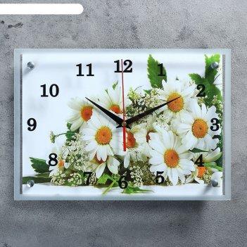 Часы настенные, серия: цветы, ромашки, 25х35  см, микс
