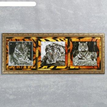 Часы-картина настенные, серия: животный мир, тигры, 35х100  см, микс