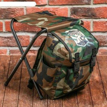 Туристический стул-рюкзак истинный турист,  32 х 28 х 34 см