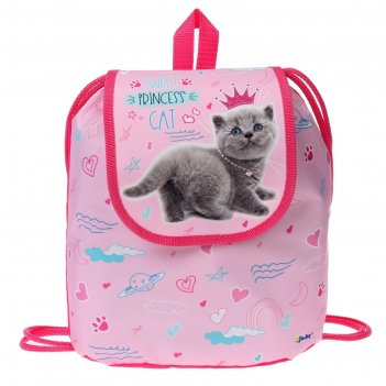 Мешок-рюкзак для обуви, с клапаном, 29 х 22 х 13.5 мм, «оникс», ср-04, cat