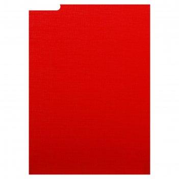 Папка для дипломных работ (без бумаги) без надписи 10др00 красная