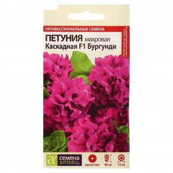Семена цветов петуния бургунди каскадная махровая f1, о, цп, 10 шт.