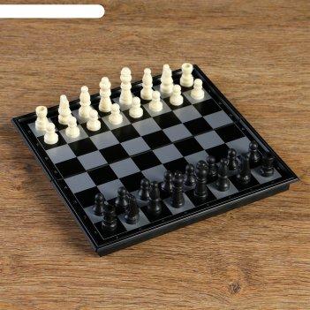 Шахматные фигуры, высота короля 3.8 см, пешки 1,9 см, пластик, чёрно-белые