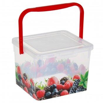 Контейнер пищевой 5 л ягоды, рисунок микс