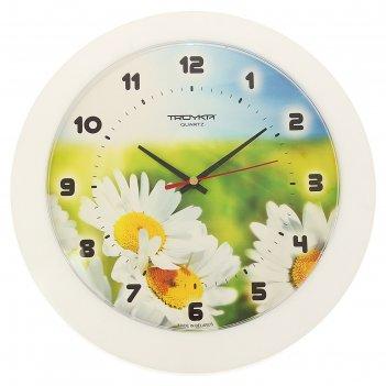 Часы настенные, серия: цветы, ромашки, белый обод, 30х30 см
