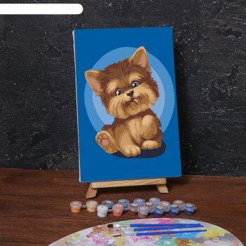 Картина по номерам на холсте с подрамником «малыш йорк» 20х30 см