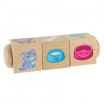 Кубики деревянные на оси кто где живет и что ест?