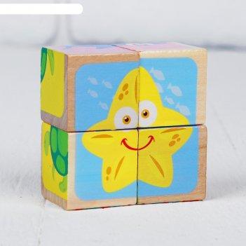Кубики морской мир, 4 шт.