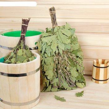 Веник для бани экстра из кавказского дуба с шалфеем