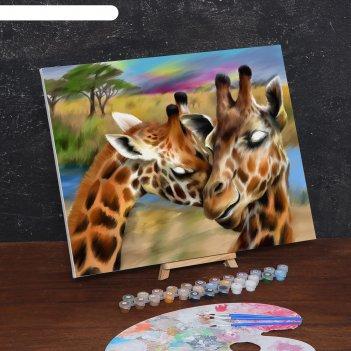 Картина по номерам на холсте с подрамником жирафы. нежность 40*50 см