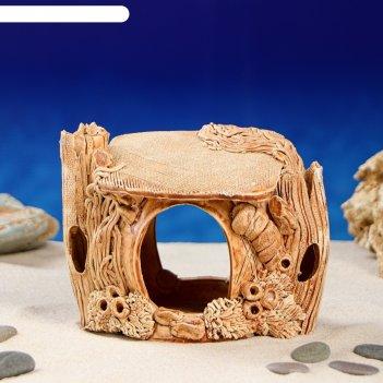 Аквадекор-грот для аквариума черепашник средний 12х14х10 см