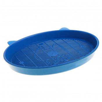 Туалет киса, 37 х 27 х 4 см, синий
