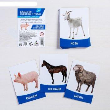 Обучающие карточки домашние животные и птицы 16 шт.