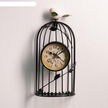Часы настенные, серия: интерьер, птичка в клетке, d=11.5 см, чёрные, 18х35