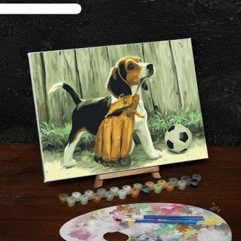 Картина по номерам на холсте щенок с мячом, 40*30 см