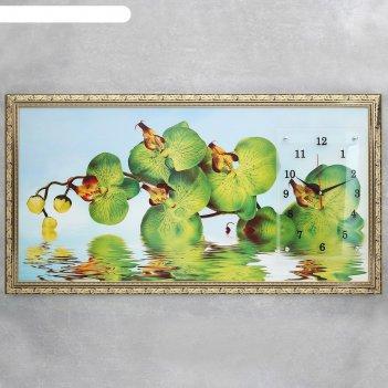 Часы-картина настенные зеленые архидеи в воде, 50х100 см