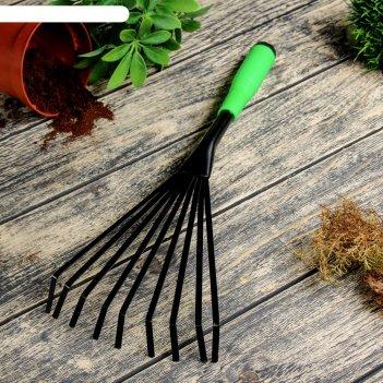 Грабли веерные 43 см, рукоять пластик зеленая