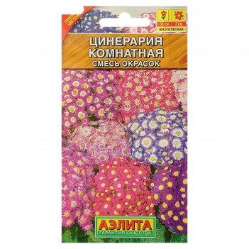 Семена цветов цинерария комнатная, смесь окрасок, мн, 0,02 г