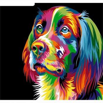 Фреска собака, а3