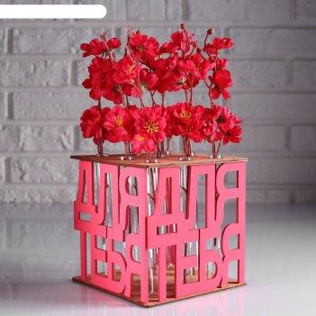 Ящик-кашпо подарочный с 9 колбами для тебя, морёный-розовый
