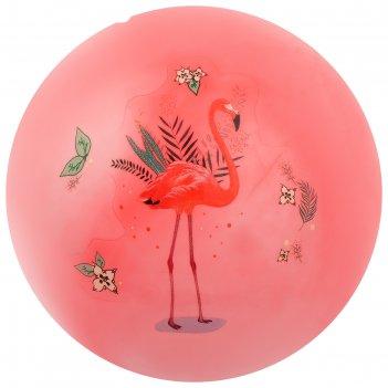 Мяч детский фламинго 22 см, 60 гр, цвета микс
