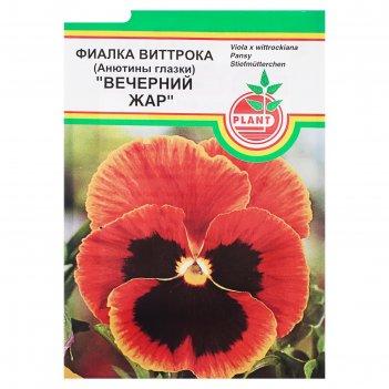 Семена цветов виола вечерний жар, дв, 0,03 г
