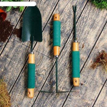 Набор садового инструмента, 3 предмета: совок, мотыжка, корнеудалитель, дл