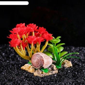 Островок с ракушками и растениями искусственными для аквариума, 12 х 9 х 9