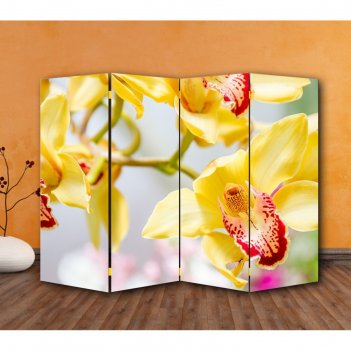 Ширма орхидеи, 200 x 160 см
