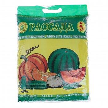 Почвогрунт для рассады огурцов, кабачков, арбузов, 5 л (3,1 кг)