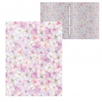 Папка на 4 кольцах, а4, 24 мм, erich krause phloxes «цветы», толщина 550 м