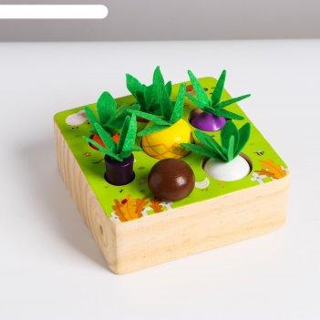 Развивающий набор «вытащи овощи и грибы» 15x15x11 см