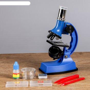 Микроскоп сувенирный опыт 600х, с подсветкой, набор для исследований