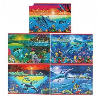 Альбом для рисования а4, 12 листов на скрепке «дельфины», блок офсет 100 г