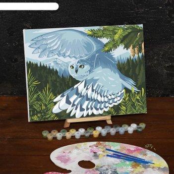 Картина по номерам на холсте сова в полете, 40*30 см
